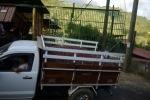 Truck waiting to deliver coffee at a recibidor, Tarrazu, Costa Rica.