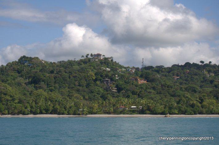 tropicalaffair13