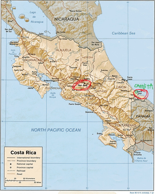 Ideally located in the middle of the country, surrounded by mountains, is San José. Go to the Caribbean coastline and south towards Panama, and in 4 hours you'll find Puerto Viejo and Cahuita National Park.